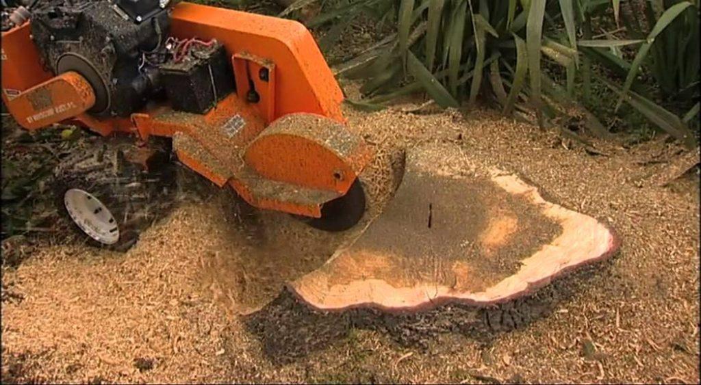 stump grinding utah